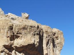 Simba on Pride Rock, perhaps?