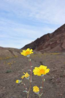 Death Valley National Park | Photo: Kim Howard