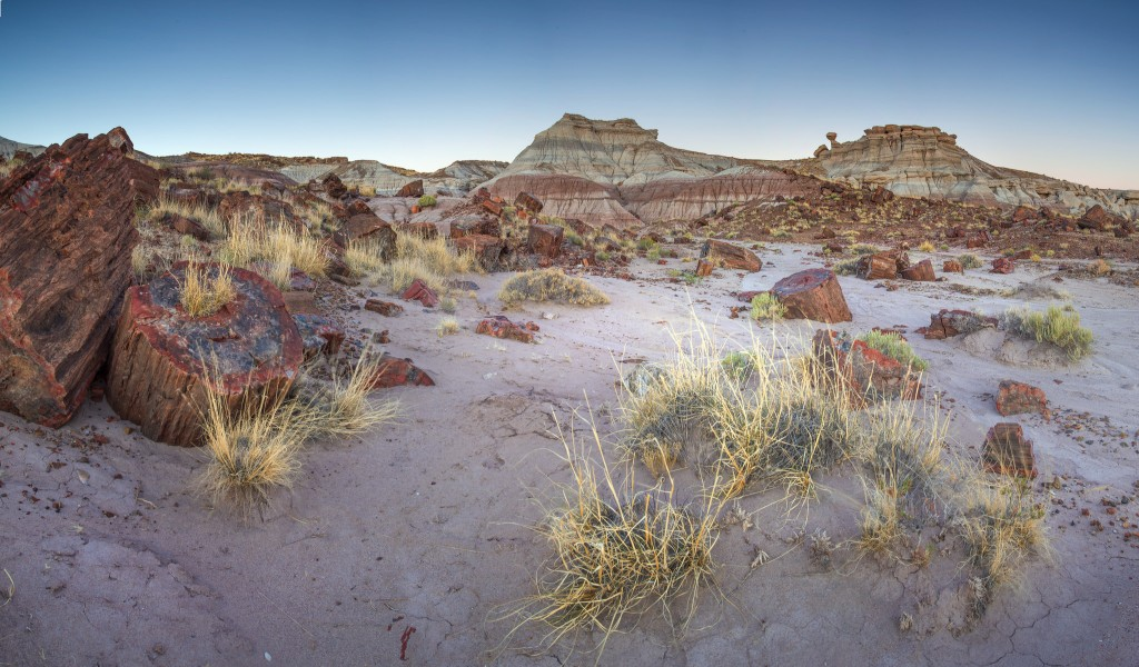 Petrified Forest National Park | Photo: Andrew Kearns/CC by 2.0