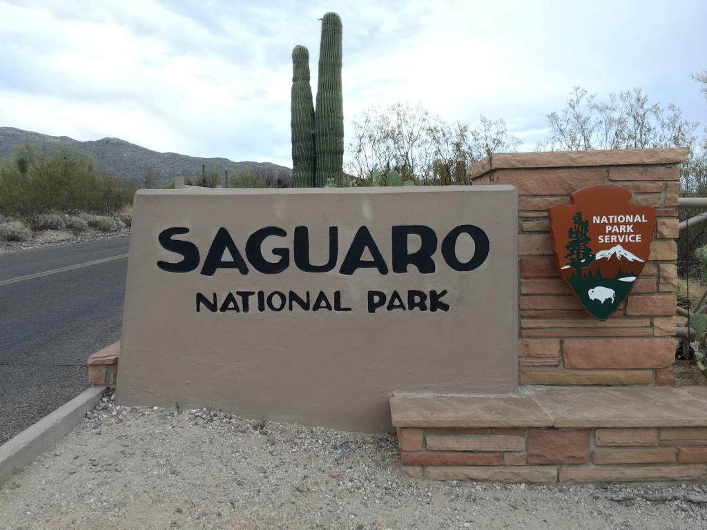 Saguaro National Park / Photo: Tom Tash - Chimani