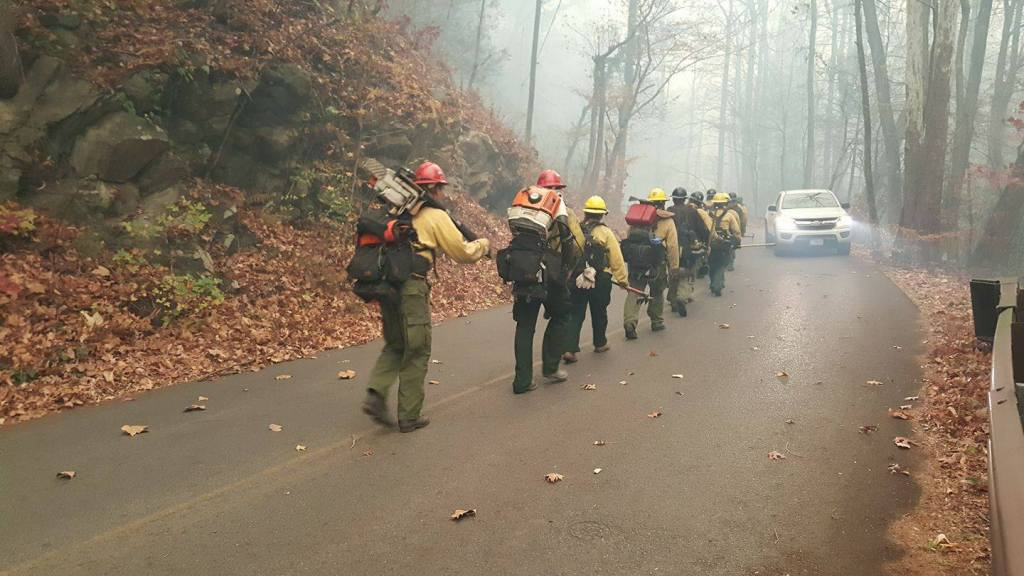 Firefighters at Great Smoky Mountains National Park | Photo: NPS/CC by 2.0